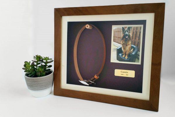 Pet Memorial shaddow box frame Iroko Main