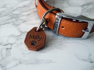 Octagon Pet Tag | Engraved Wooden Dog Tag