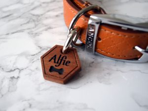 Hexagon Dog Tag | Engraved Wooden Dog Tag